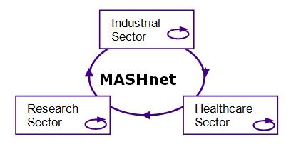 Three strands of MASHnet